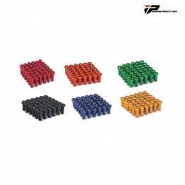 Têtes de rayons couleurs pour roues supermotard